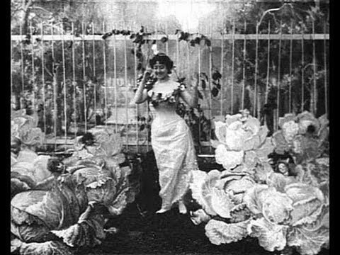 The Cabbage Fairy (La Fée aux Choux)