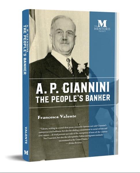 Giannini Icon 3 28
